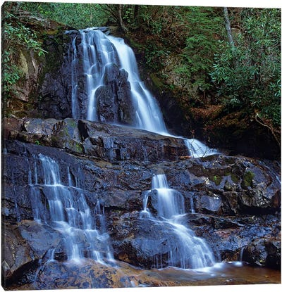 Waterfall, Laurel Creek, Great Smoky Mountains National Park, Tennessee Canvas Art Print
