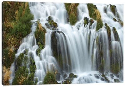 Waterfall, Niagara Springs, Thousand Springs State Park, Idaho Canvas Art Print