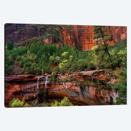 Waterfalls At Emerald Pools, Zion National Park, Utah Canvas Print #TFI1135} by Tim Fitzharris Canvas Art