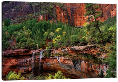 Waterfalls At Emerald Pools, Zion National Park, Utah Canvas Art Print