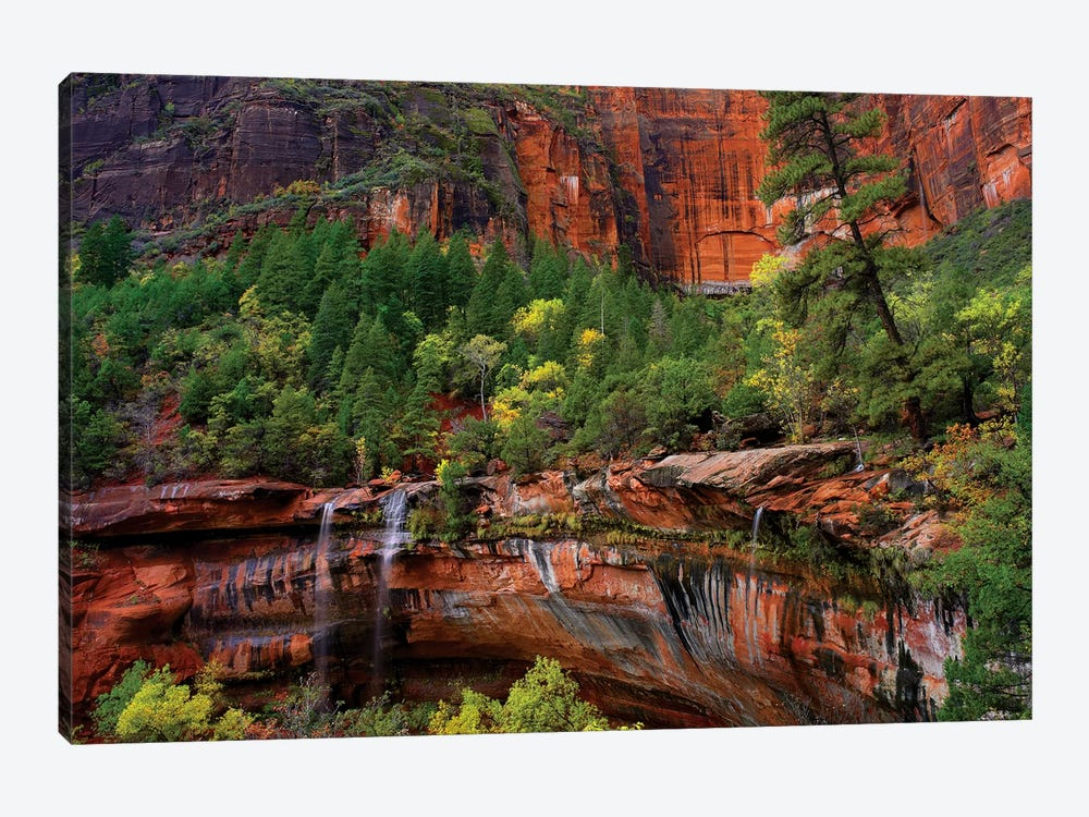 Waterfalls At Emerald Pools, Zion National Park, Utah by Tim Fitzharris 1-piece Canvas Wall Art