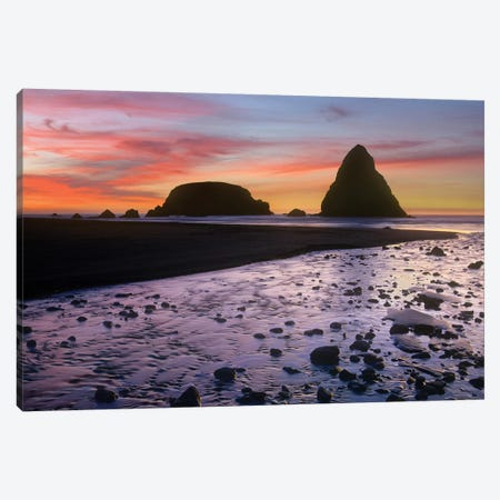 Whaleshead Beach With Sea Stacks, Oregon Canvas Print #TFI1149} by Tim Fitzharris Canvas Art