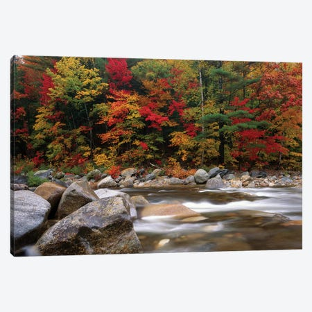 Wild River In Eastern Hardwood Forest, White Mountains National Forest, Maine Canvas Print #TFI1159} by Tim Fitzharris Art Print