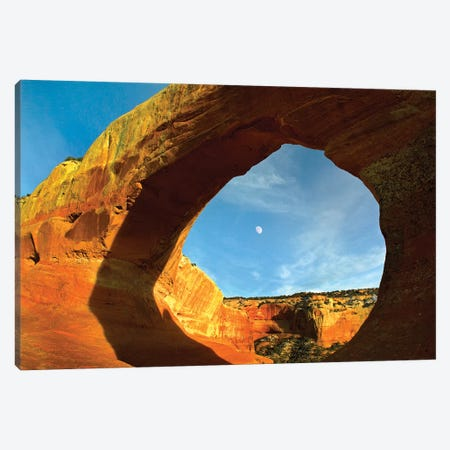 Wilson Arch With A Span Of 91 Feet And Height Of 46 Feet, Off Of Highway 191, Made Of Entrada Sandstone, Utah I Canvas Print #TFI1166} by Tim Fitzharris Canvas Print