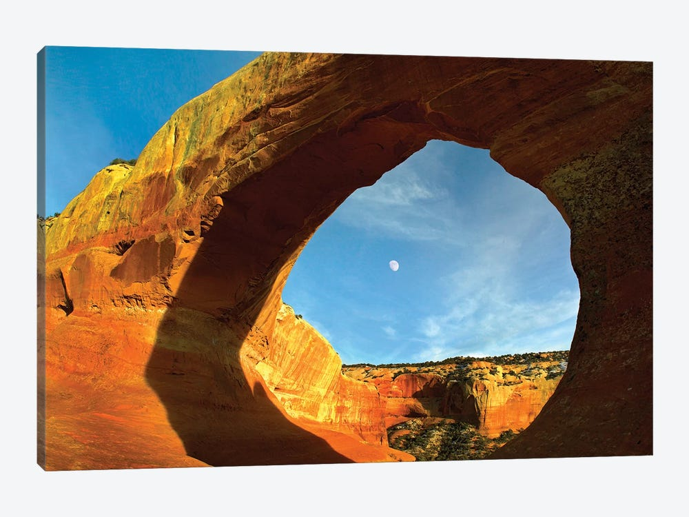 Wilson Arch With A Span Of 91 Feet And Height Of 46 Feet, Off Of Highway 191, Made Of Entrada Sandstone, Utah I by Tim Fitzharris 1-piece Canvas Artwork