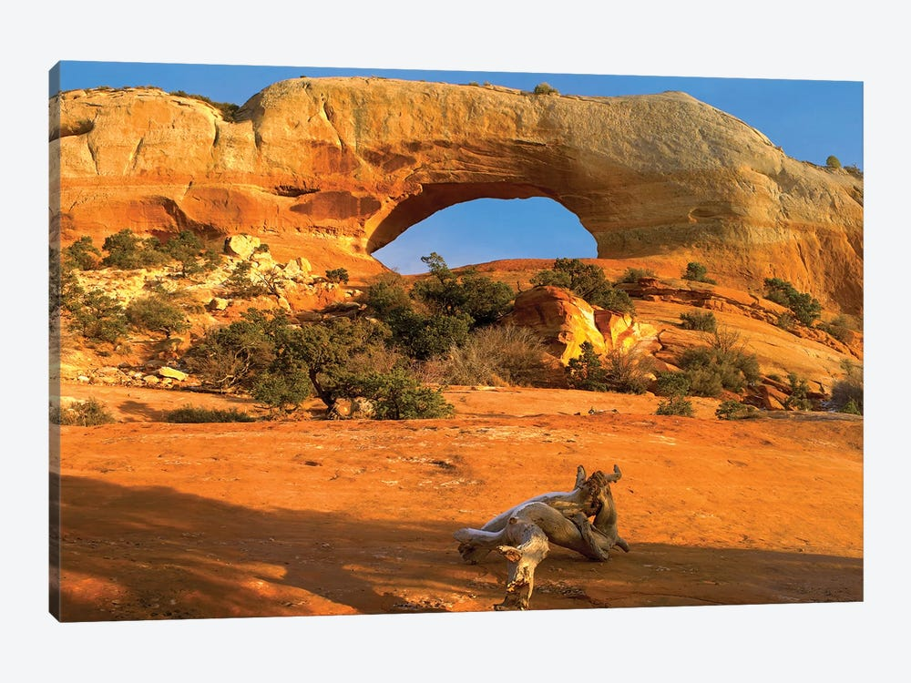 Wilson Arch With A Span Of 91 Feet And Height Of 46 Feet, Off Of Highway 191, Made Of Entrada Sandstone, Utah II by Tim Fitzharris 1-piece Art Print