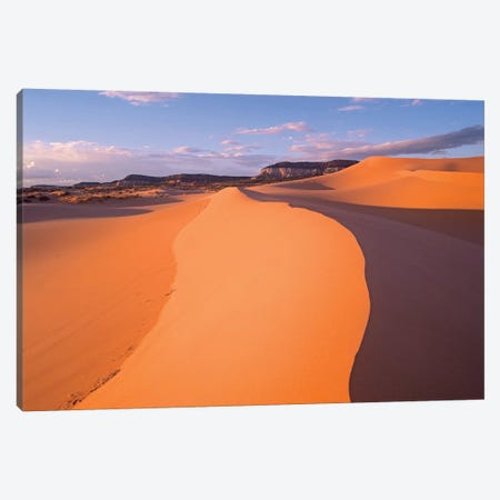 Wind Ripples In Sand Dunes Beneath Sandstone Cliffs, Coral Pink Sand Dunes State Park, Utah I Canvas Print #TFI1169} by Tim Fitzharris Canvas Artwork