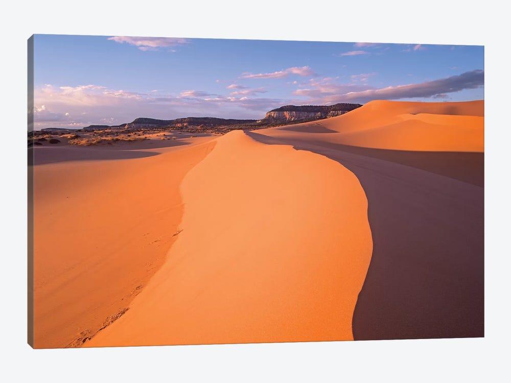 Wind Ripples In Sand Dunes Beneath Sandstone Cliffs, Coral Pink Sand Dunes State Park, Utah I by Tim Fitzharris 1-piece Art Print