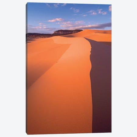 Wind Ripples In Sand Dunes Beneath Sandstone Cliffs, Coral Pink Sand Dunes State Park, Utah II Canvas Print #TFI1170} by Tim Fitzharris Art Print