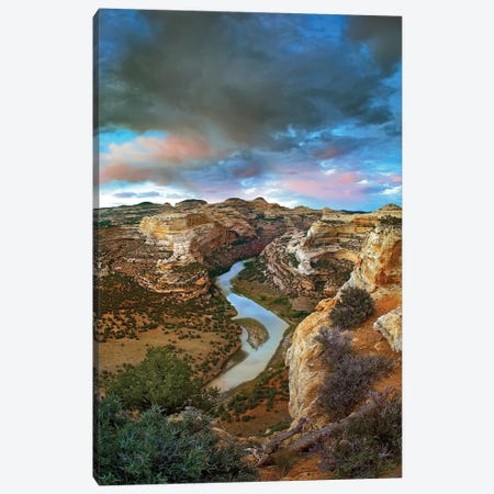 Winding Yampa River, Dinosaur National Monument, Colorado Canvas Print #TFI1171} by Tim Fitzharris Canvas Art Print