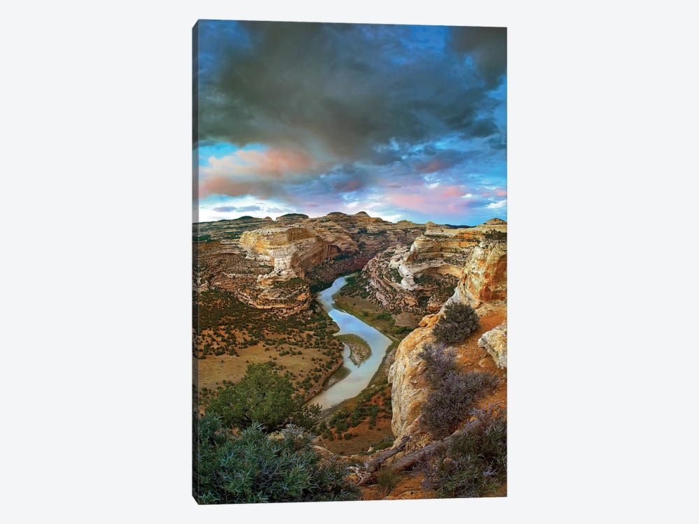 Winding Yampa River, Dinosaur National Monument, Colorado by Tim Fitzharris 1-piece Canvas Art