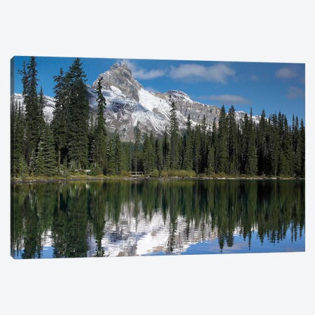 Wiwaxy Peaks And Cathedral Mountain At Lake O'Hara, Yoho National Park, British Columbia, Canada I Canvas Print #TFI1175} by Tim Fitzharris Canvas Artwork