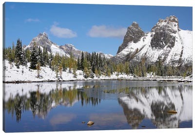 Wiwaxy Peaks And Cathedral Mountain At Lake O'Hara, Yoho National Park, British Columbia, Canada II Canvas Art Print