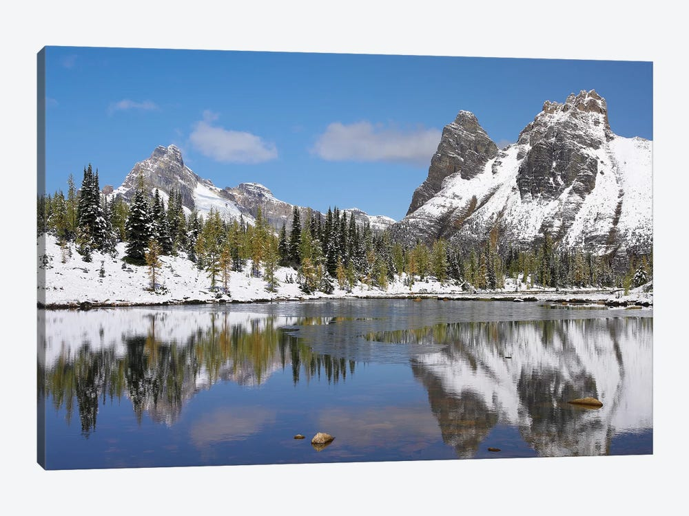 Wiwaxy Peaks And Cathedral Mountain At Lake O'Hara, Yoho National Park, British Columbia, Canada II by Tim Fitzharris 1-piece Canvas Art Print