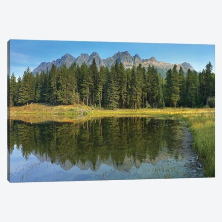 Yellowhead Mountain And Yellowhead Lake With Boreal Forest, Mount Robson Provinvial Park, British Columbia, Canada Canvas Print #TFI1188} by Tim Fitzharris Canvas Wall Art