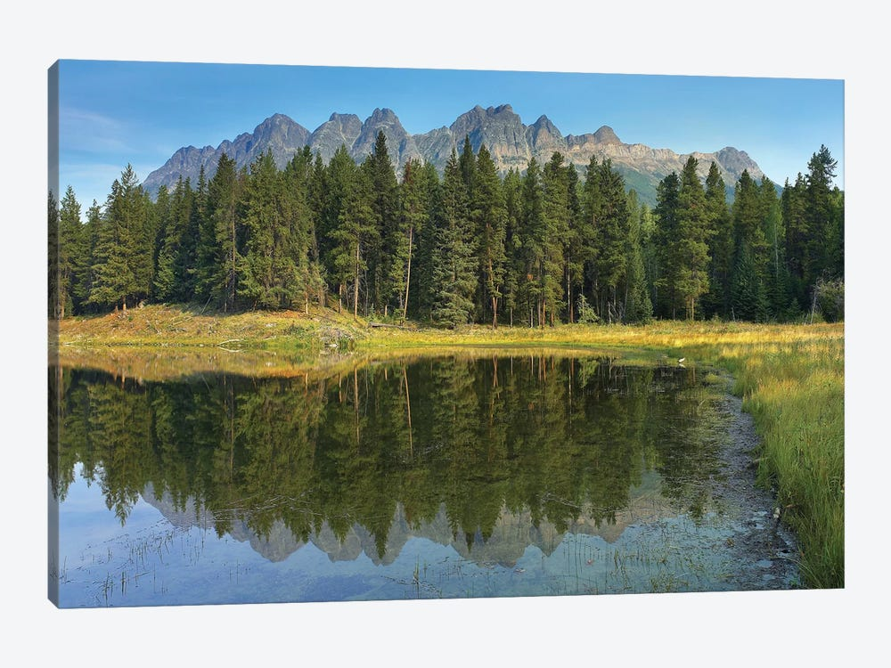 Yellowhead Mountain And Yellowhead Lake With Boreal Forest, Mount Robson Provinvial Park, British Columbia, Canada by Tim Fitzharris 1-piece Canvas Artwork