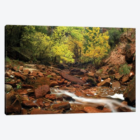 Zion Canyon Near Emerald Pools, Zion National Park, Utah Canvas Print #TFI1193} by Tim Fitzharris Canvas Art Print