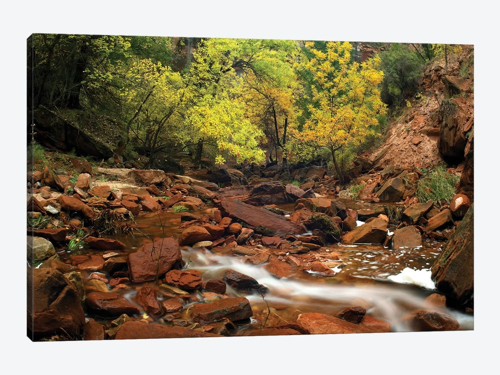 Zion Canyon Near Emerald Pools, Zion National Park, Utah by Tim Fitzharris 1-piece Canvas Wall Art