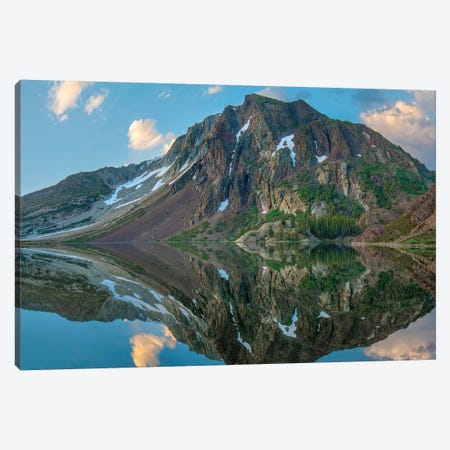 Dana Plateau From Ellery Lake, Sierra Nevada, Inyo National Forest, California I Canvas Print #TFI1201} by Tim Fitzharris Canvas Print