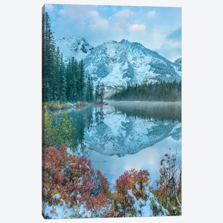 Grand Tetons From String Lake, Grand Teton National Park, Wyoming II Canvas Print #TFI1207} by Tim Fitzharris Canvas Artwork