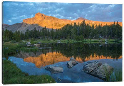 Mountain Reflected In Alpine Lake, Mount Dana, Tioga Pass, Sierra Nevada, Yosemite National Park, California Canvas Art Print