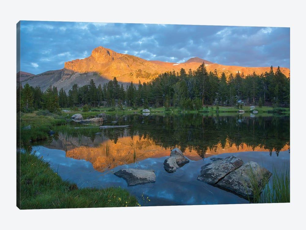 Mountain Reflected In Alpine Lake, Mount Dana, Tioga Pass, Sierra Nevada, Yosemite National Park, California by Tim Fitzharris 1-piece Canvas Artwork