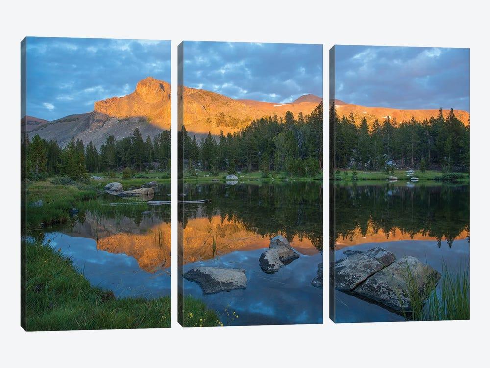 Mountain Reflected In Alpine Lake, Mount Dana, Tioga Pass, Sierra Nevada, Yosemite National Park, California by Tim Fitzharris 3-piece Canvas Wall Art