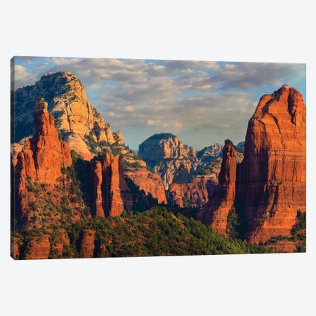 Mountains, Red Rock-Secret Mountain Wilderness, Arizona I Canvas Print #TFI1214} by Tim Fitzharris Art Print