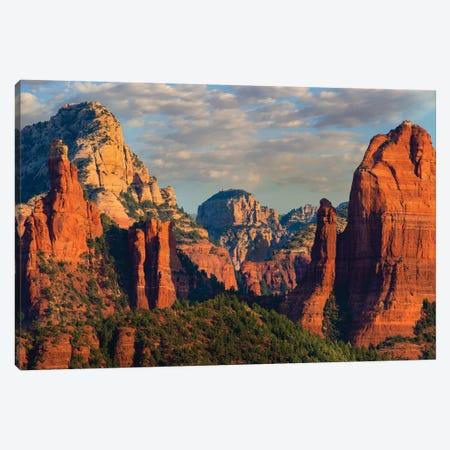 Mountains, Red Rock-Secret Mountain Wilderness, Arizona I Canvas Print #TFI1214} by Tim Fitzharris Art Print