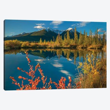 Peaks, Sundance Range, Vermilion Lakes, Banff National Park, Alberta, Canada I Canvas Print #TFI1217} by Tim Fitzharris Art Print