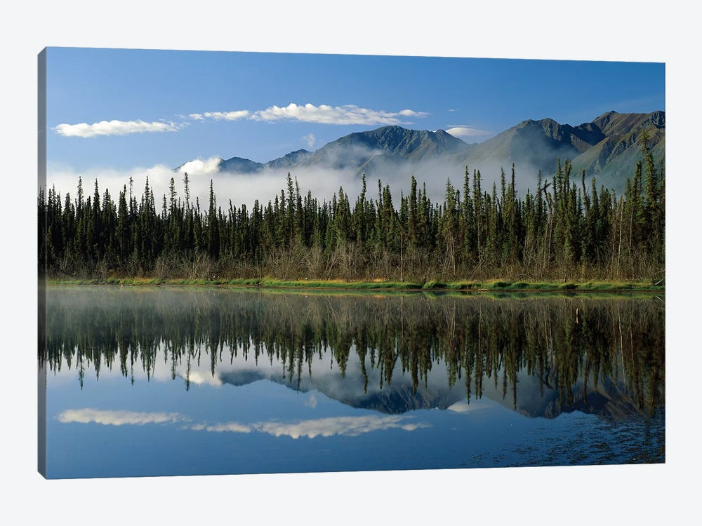 Boreal Forest Along Lake Edge, Nutzotin Mountains, Alaska by Tim Fitzharris 1-piece Canvas Wall Art