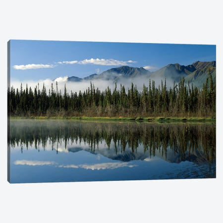 Boreal Forest Along Lake Edge, Nutzotin Mountains, Alaska Canvas Print #TFI121} by Tim Fitzharris Art Print