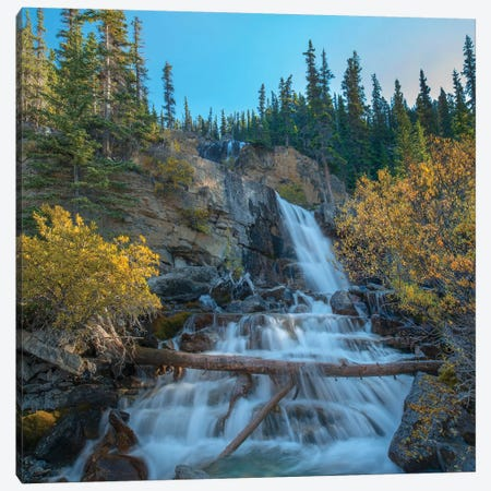 Tangle Falls From Icefields Parkway, Rocky Mountains, Alberta, Canada Canvas Print #TFI1225} by Tim Fitzharris Canvas Wall Art