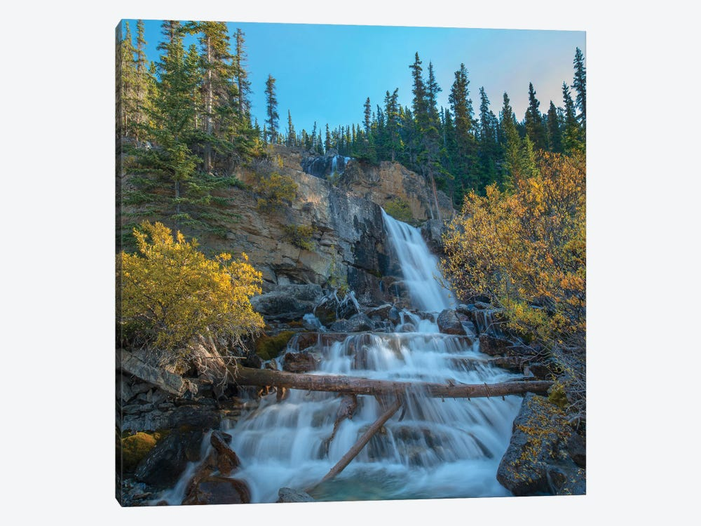Tangle Falls From Icefields Parkway, Rocky Mountains, Alberta, Canada by Tim Fitzharris 1-piece Canvas Print