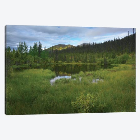 Boreal Forest With Pond And Antimony Mountain In The Background, Ogilvie Mountains, Yukon Territory, Canada 3-Piece Canvas #TFI123} by Tim Fitzharris Canvas Art Print