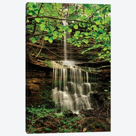 Pearly Creek Falls, Buffalo River Trail, Arkansas Canvas Print #TFI1244} by Tim Fitzharris Canvas Art