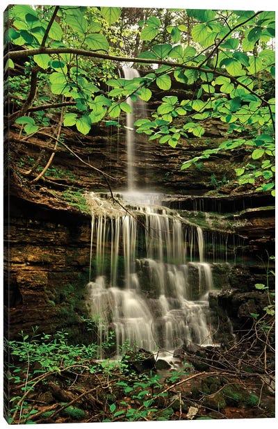 Pearly Creek Falls, Buffalo River Trail, Arkansas Canvas Art Print