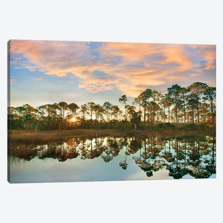Sunrise at St. Joseph Peninsula State Buffer Preserve, Florida Canvas Print #TFI1246} by Tim Fitzharris Canvas Wall Art
