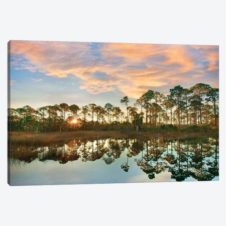 Sunrise at St. Joseph Peninsula State Buffer Preserve, Florida Canvas Print #TFI1246} by Tim Fitzharris Canvas Wall Art