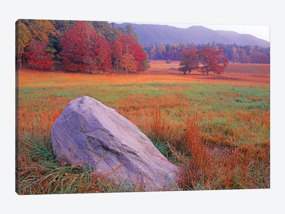 Boulder And Autumn Colored Deciduous Forest, Cades Cove, Great Smoky Mountains National Park, Tennessee by Tim Fitzharris 1-piece Art Print