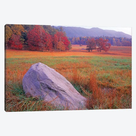 Boulder And Autumn Colored Deciduous Forest, Cades Cove, Great Smoky Mountains National Park, Tennessee Canvas Print #TFI124} by Tim Fitzharris Canvas Artwork