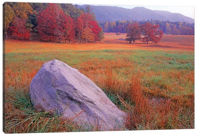 Boulder And Autumn Colored Deciduous Forest, Cades Cove, Great Smoky Mountains National Park, Tennessee Canvas Art Print