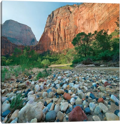 Angels Landing And Virgin River, Zion National Park, Utah Canvas Art Print