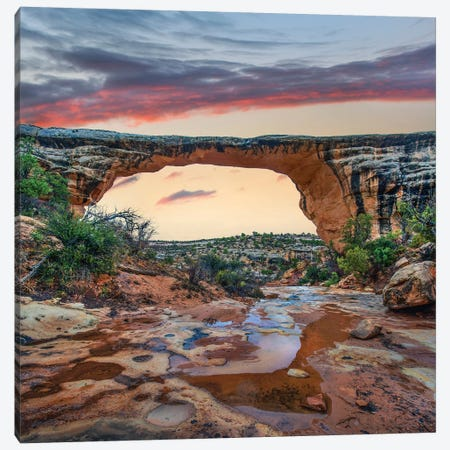 Arch, Owachomo Bridge, Natural Bridges Nm, Utah 3-Piece Canvas #TFI1256} by Tim Fitzharris Canvas Art Print
