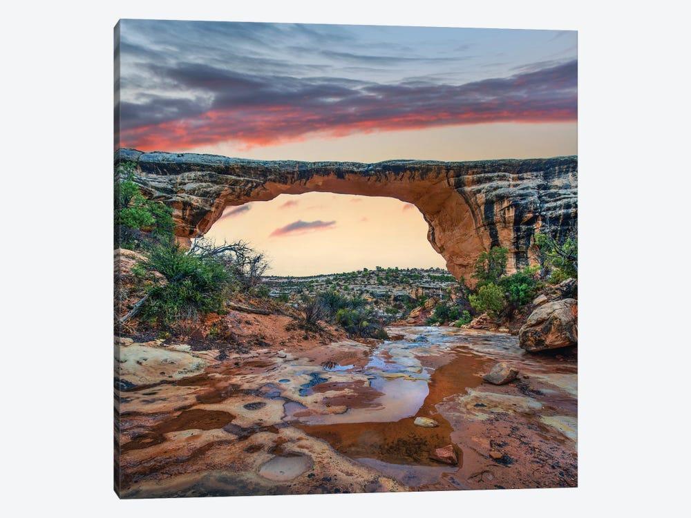 Arch, Owachomo Bridge, Natural Bridges Nm, Utah by Tim Fitzharris 1-piece Canvas Art Print