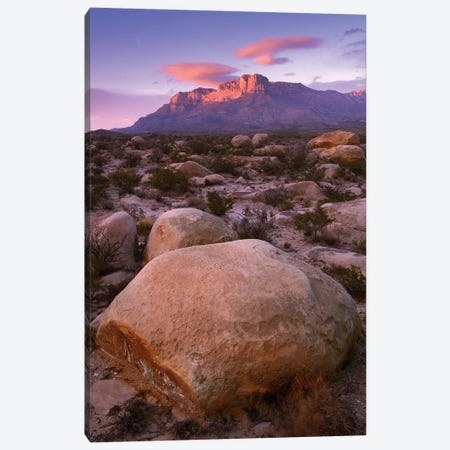 Boulder Field And El Capitan, Guadalupe Mountains National Park, Texas Canvas Print #TFI125} by Tim Fitzharris Canvas Artwork