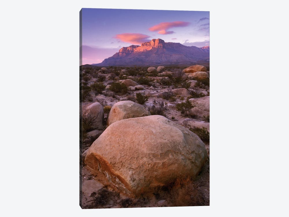 Boulder Field And El Capitan, Guadalupe Mountains National Park, Texas by Tim Fitzharris 1-piece Canvas Art