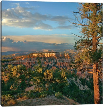 Butte, Bryce Canyon National Park, Utah Canvas Art Print