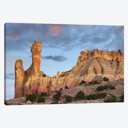 Chimney Rock Dawn, Ghost Ranch, New Mexico Canvas Print #TFI1281} by Tim Fitzharris Canvas Art Print