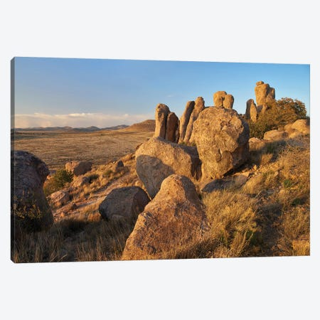 City Of Rocks State Park, New Mexico 3-Piece Canvas #TFI1284} by Tim Fitzharris Canvas Art